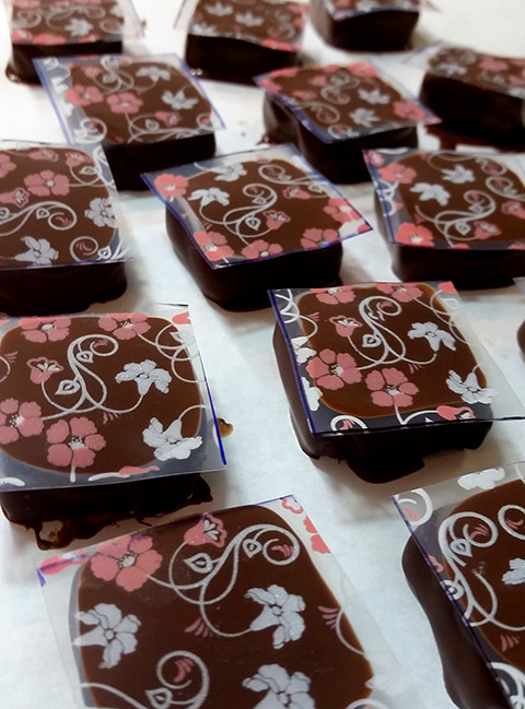 aplicaca_stencil_para_chocolate_em_fudge